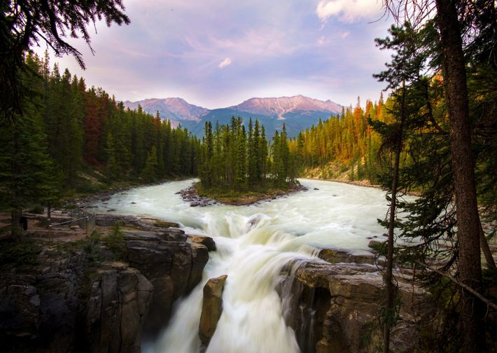 Sunwapta Falls, Jasper-Nationalpark.