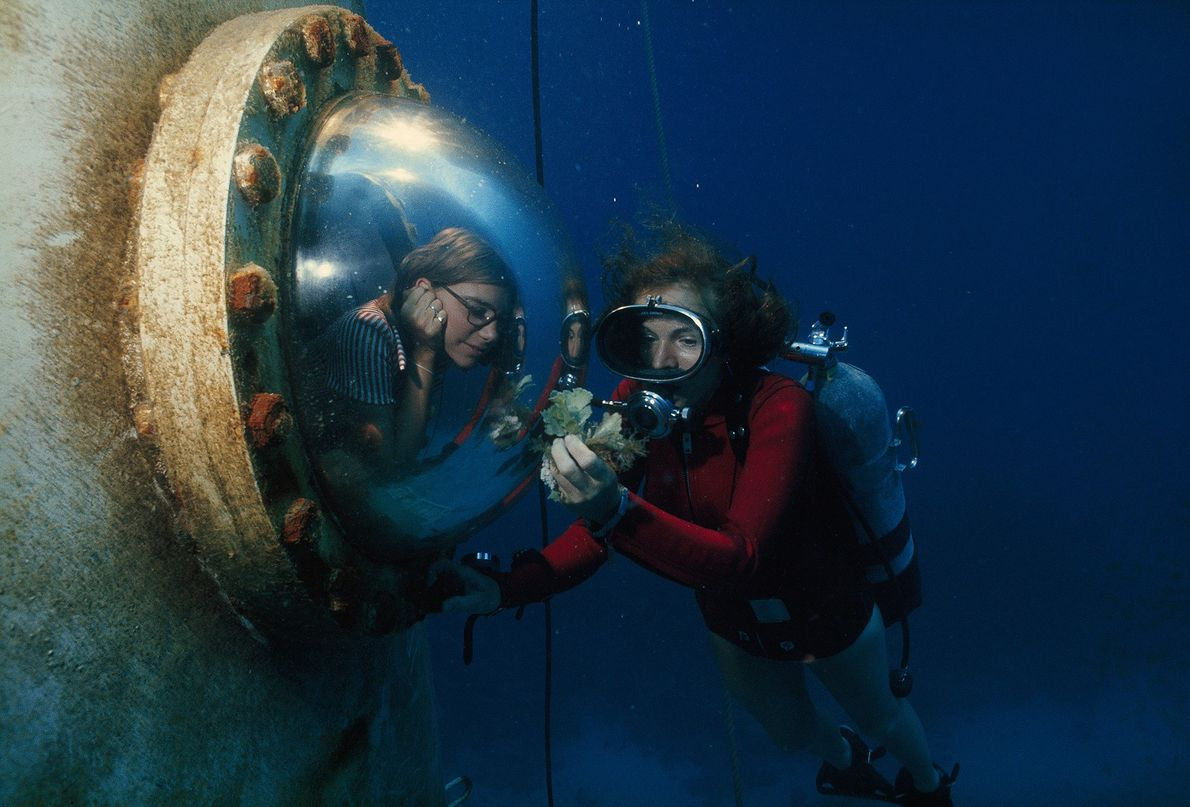 Earle zeigt einem Besucher unter dem Meer eine Alge.