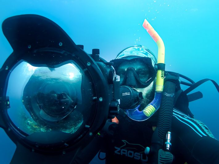 Unterwasserfotografie Tipps