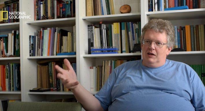 Edmonds Urzeitreich: Was versteinerte Pflanzenreste verraten
