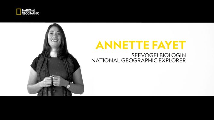 National Geographic Explorer: Annette Fayet