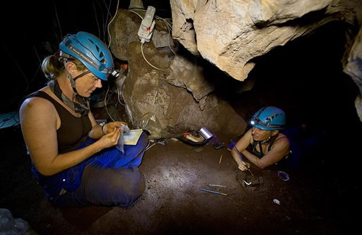 Die Knochenreste wurden in einer schwer zugänglichen Kammer unter der Erde gefunden. Um dorthin zu gelangen, …