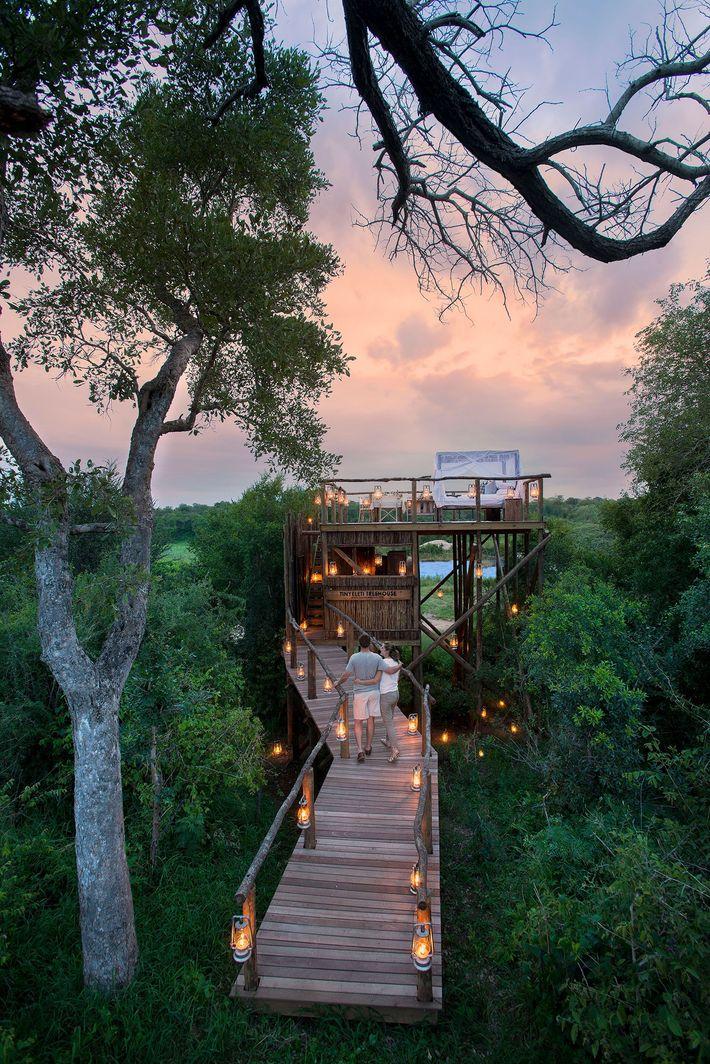 Lion Sands Game Reserve im Kruger-Nationalpark, Südafrika