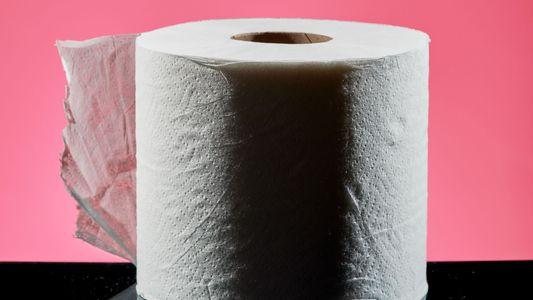 Was nutzten Menschen vor Erfindung des Toilettenpapiers?