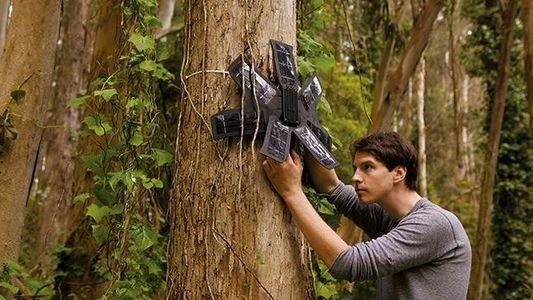 Handys für den Regenwald