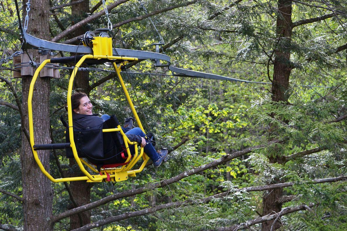 Tree Canopy Pedaling, Glen Sutton, Quebec