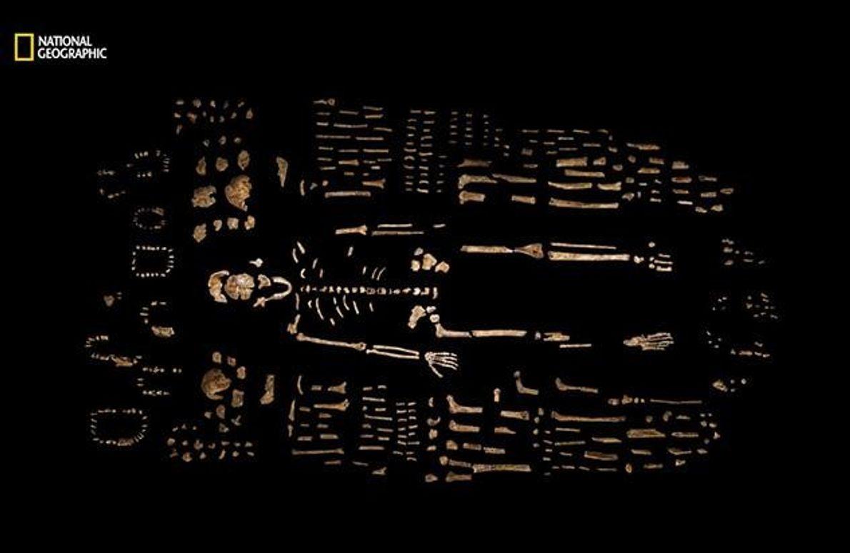 Über 1.500 Elemente von mindestens 15 verschiedenen Individuen konnten geborgen werden. Das macht die Ausgrabungsstätte zu …