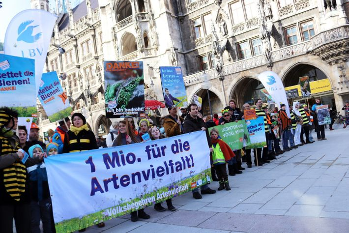 Umzug auf dem Marienplatz in München: Mehr als 1,7 Millionen Wahlberechtigte haben für das bayerische Volksbegehren ...