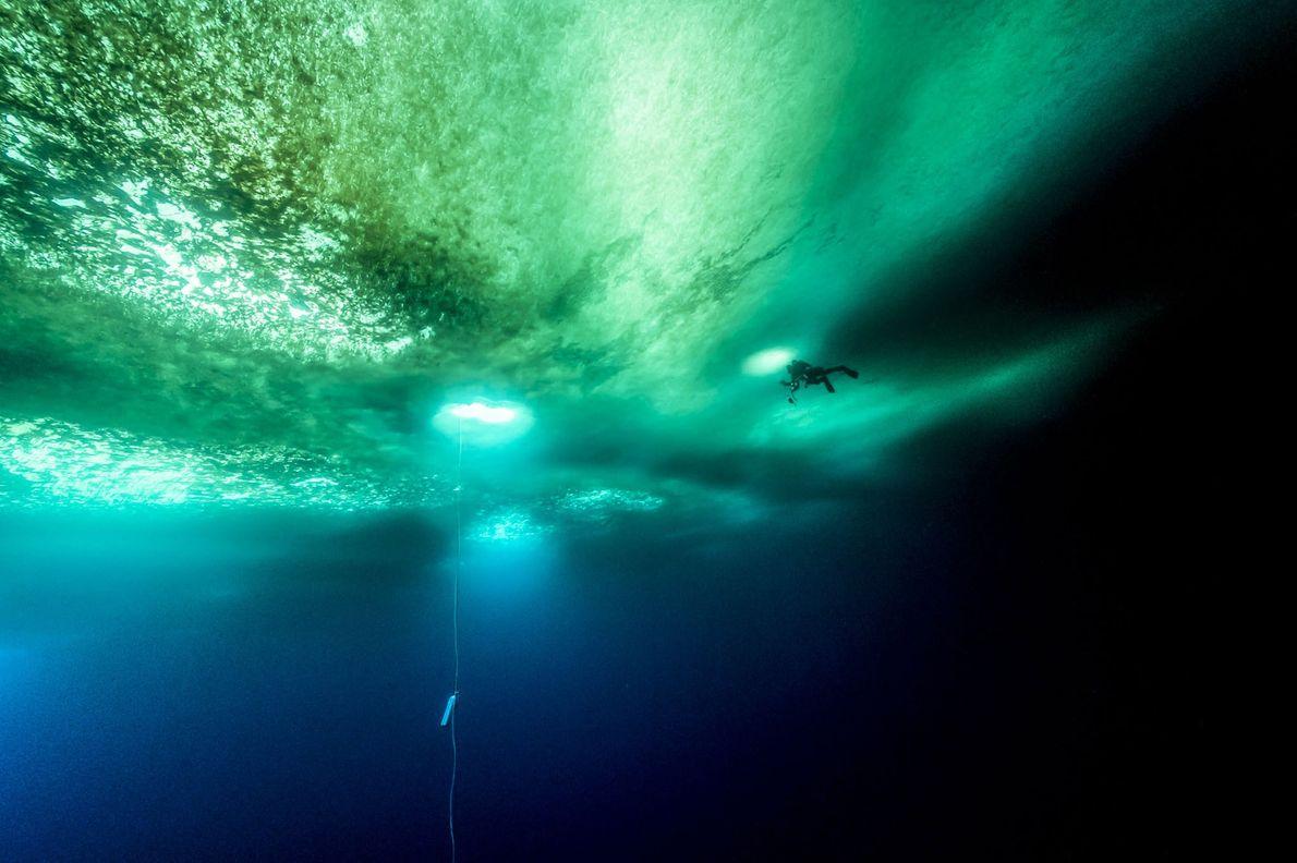 Ein Taucher schwimmt unter meterdickem Eis. Das Seil, das in seiner Nähe im Wasser hängt, hilft ...