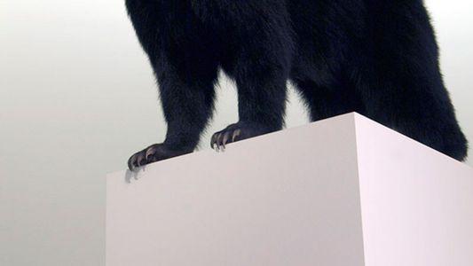 Galerie: Taxidermie: Wo ist die Grenze zwischen Mensch und Tier?