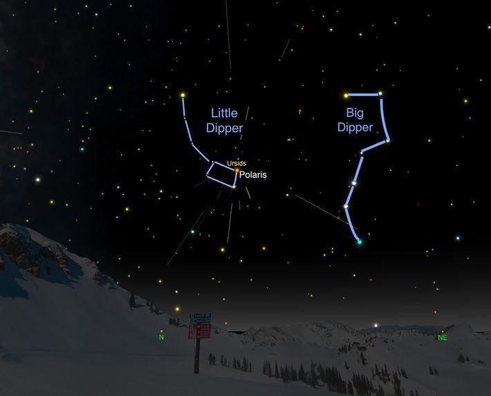 Der Radiant der Ursiden liegt im Sternbild des Kleinen Bären bzw. des Kleinen Wagens.