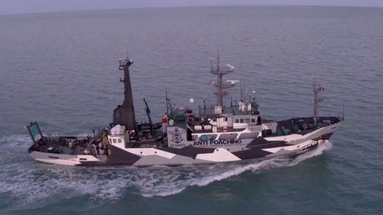 Schiff patrouilliert in den Gewässern