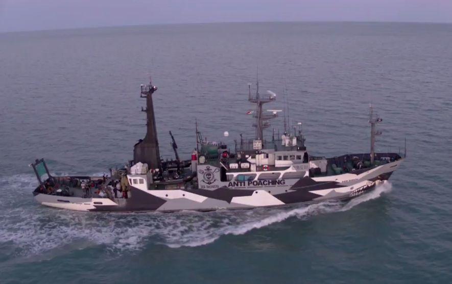Fischereiverbot soll seltensten Meeressäuger der Welt schützen