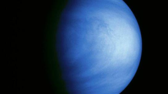 Dieses kolorierte Bild der Venus wurde am 14. Februar 1990 von der Raumsonde Galileo aus einer ...