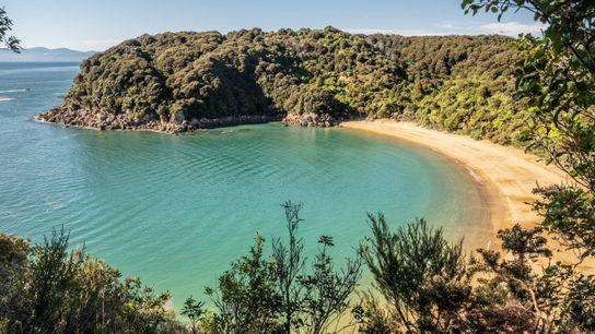 Eine geschützte Strandbucht lockt Besucher in den Abel-Tasman-Nationalpark.