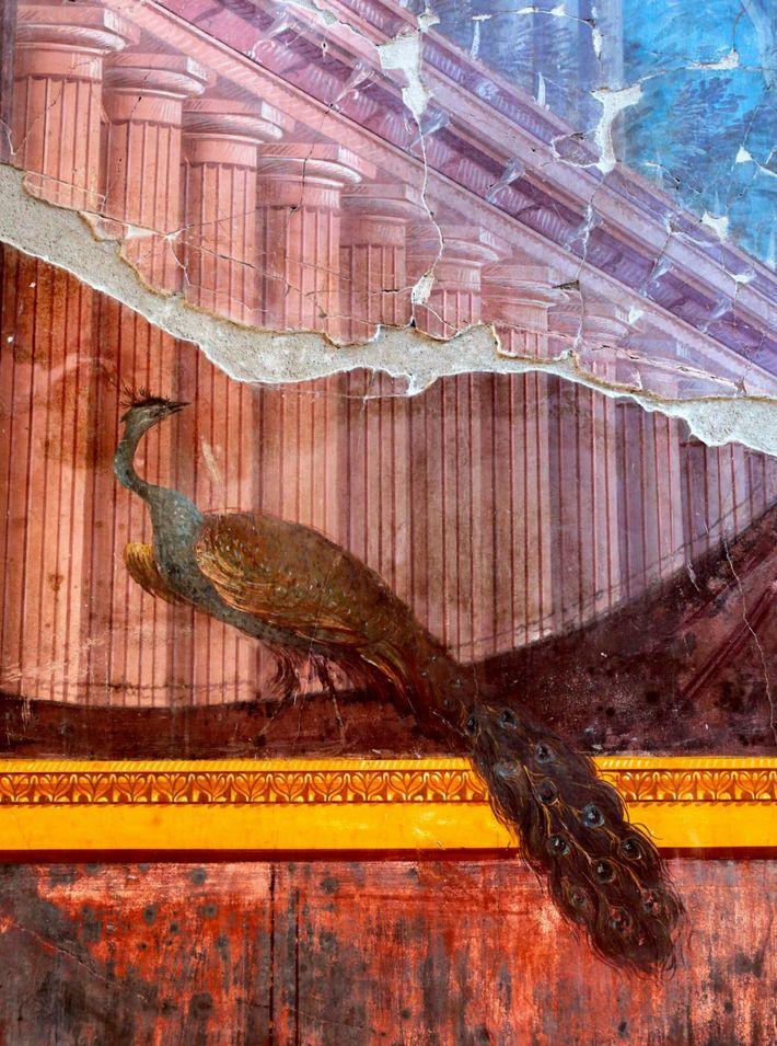 Ein Detail eines leuchtenden Pfaus illustriert den Luxus, der einst die Gäste der Villa A begrüßte.