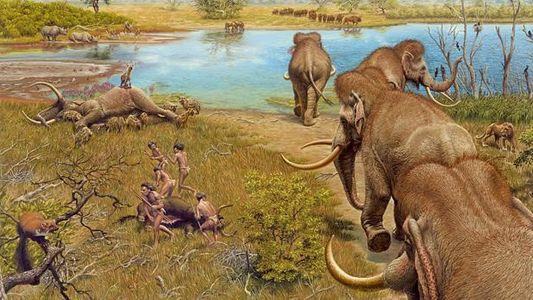 Deutschlands Ur-Elefanten