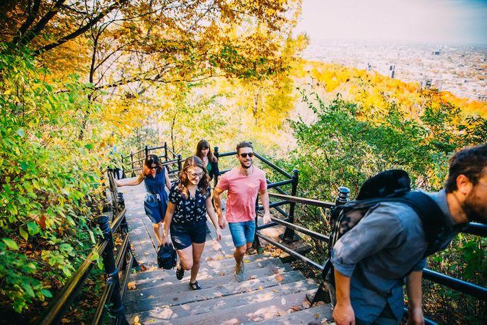 Der Parc du Mont-Royal ist das ganze Jahr über geöffnet und belohnt jene, die es bis ...