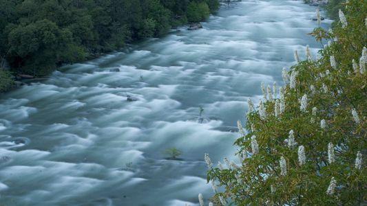 Die wilden und malerischen Flüsse der USA