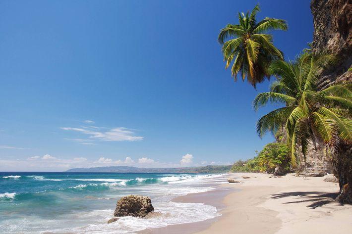 An den Stränden Costa Ricas – wie hier am Playa Cocolito – kann man sich neben ...