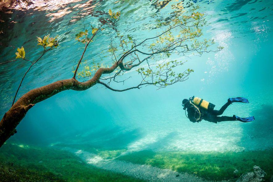 ÖSTERREICH: Jeden Frühling steigt der Wasserpegel des Grünen Sees um etwa neun Meter an und überflutet ...