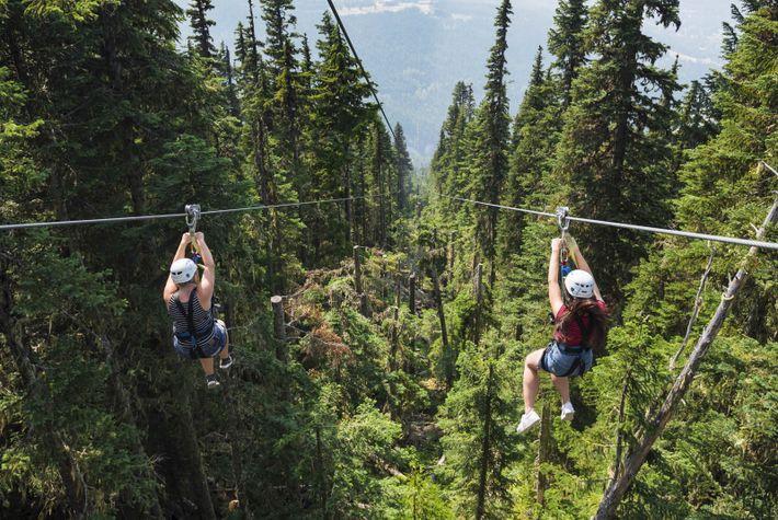 Eine Ziplinetour ist das ideale Abenteuer für jeden, der nach der perfekten Mischung aus Action, Adrenalin ...